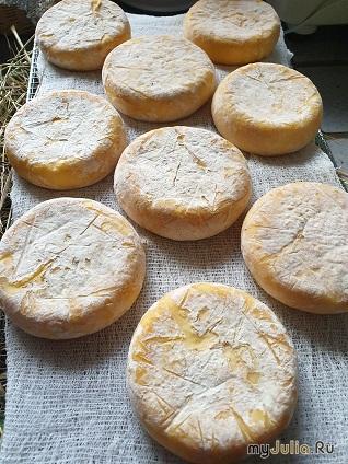 сыр домашний, 2 недели