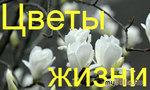 """Итоги конкурса """"Цветы жизни"""""""