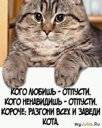 Заведите кота!