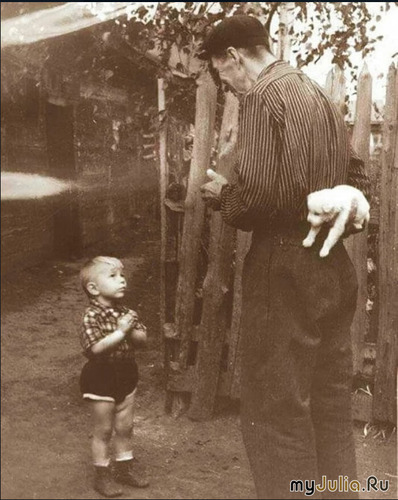 Дедушка, внук и щеночек