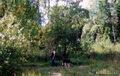 В лесу.2005г